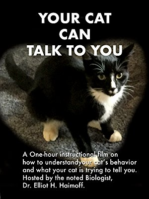 Your Cat Can Talk to You