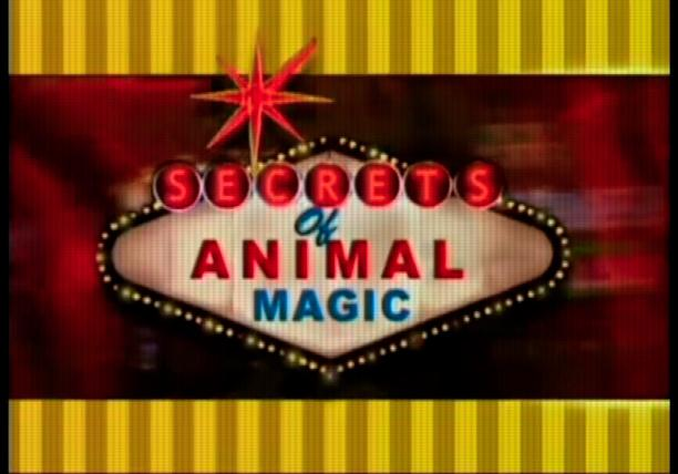 Secrets of Animal Magic