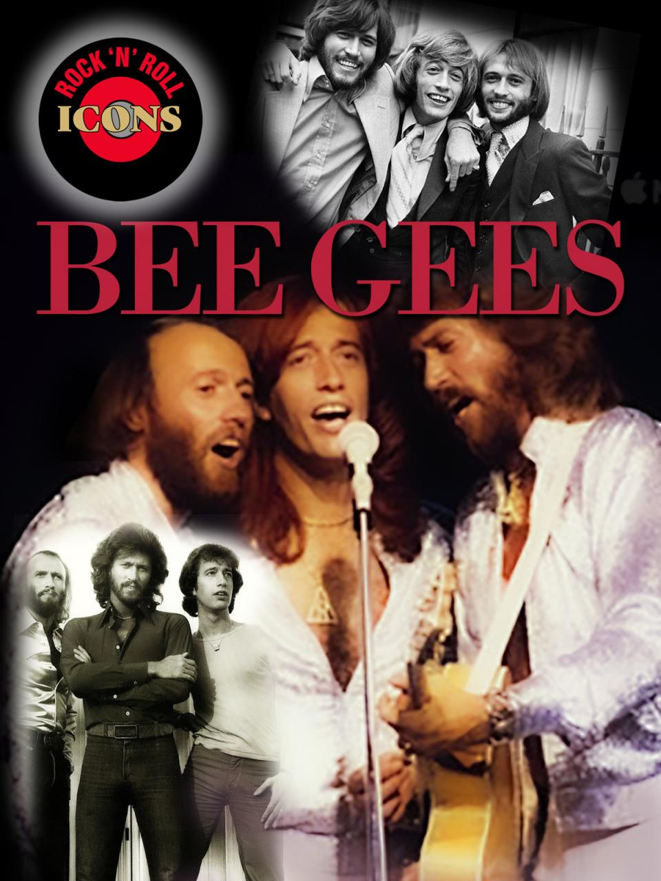 Rock Icons: Bee Gees